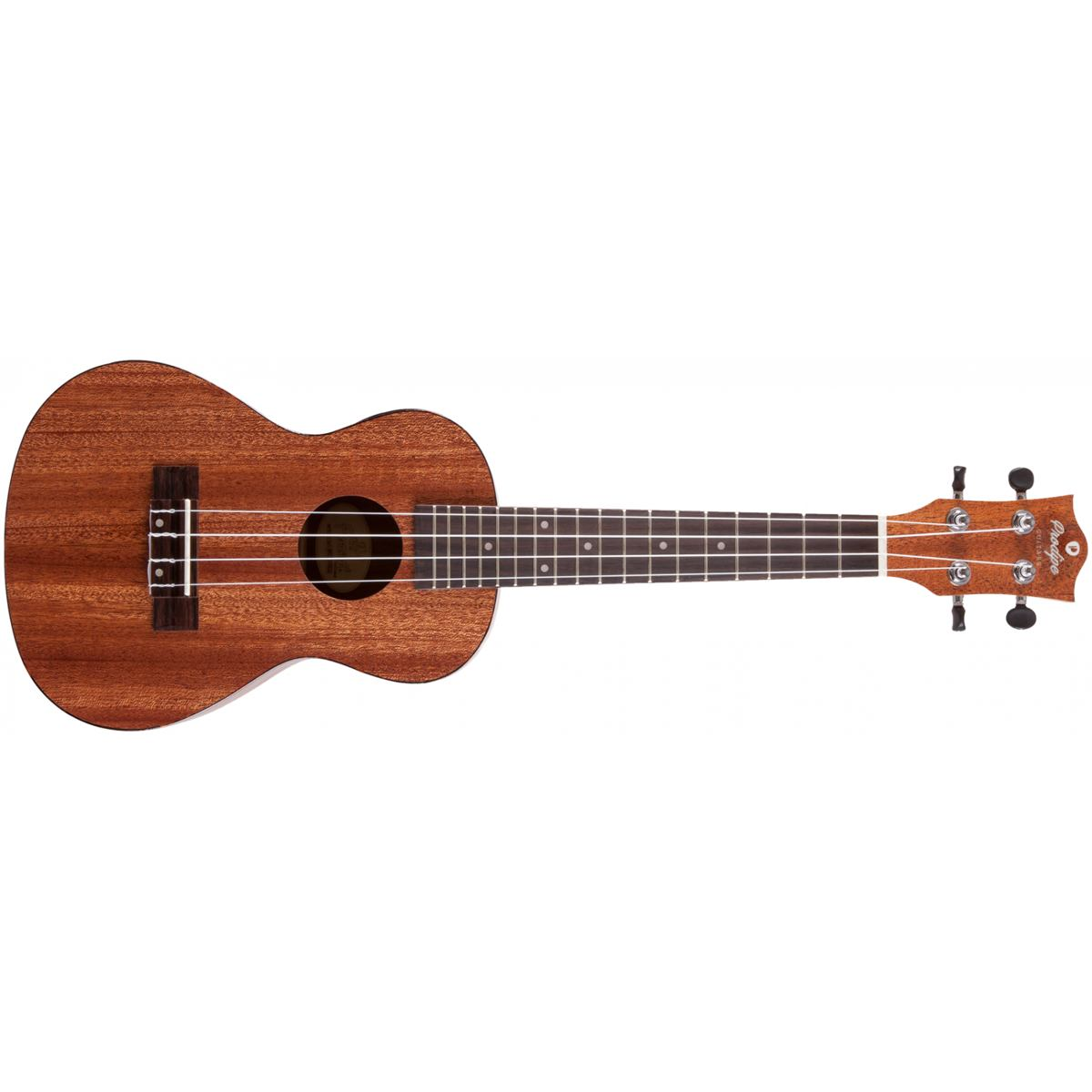 Prodipe Guitars BC210 EQ