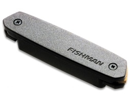 Fishman Neo-D humbucking